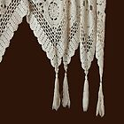 HEATHER'S LACE CURTAIN by Thomas Barker-Detwiler