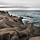 Oregon Coast near Depoe Bay. by Charles & Patricia   Harkins ~ Picture Oregon