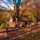 Autumn Glamour Glow  by JHRphotoART