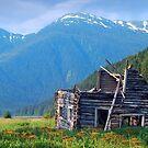 Log cabin at Alice Arm by Istvan Hernadi