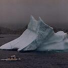 Iceberg Tour at Twillingate Newfoundland by Andrew Mather