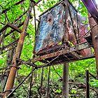 Rusted Out Box  by Paul Lubaczewski