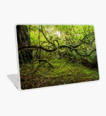 Mossy Forest Laptop Skin
