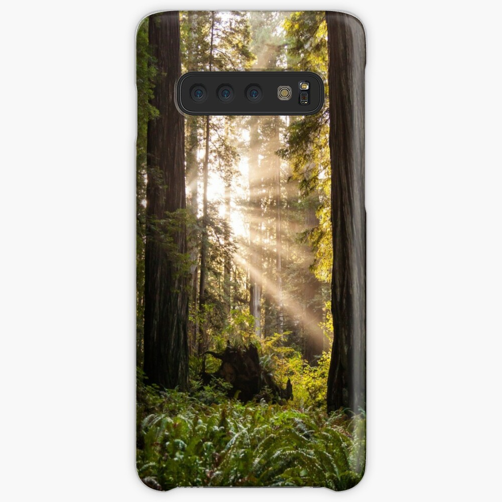 Forest Sunrays Case & Skin for Samsung Galaxy