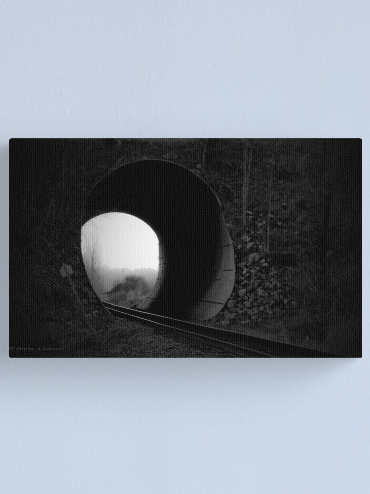 Alternate view of Entering the Abyss Canvas Print