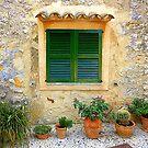 The Green Shutter With Pots...............................Majorca by Fara