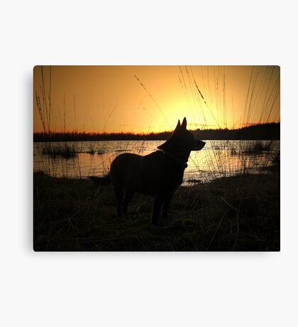 Sunset with my dog Canvas Print