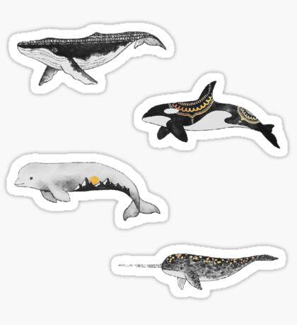 Fish Pack Sticker