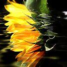 Glow as You Go by Terri~Lynn Bealle