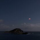 Super Blood Wolf Moon Eclipse Over Rabbit Island And Flat Island. by Alex Preiss
