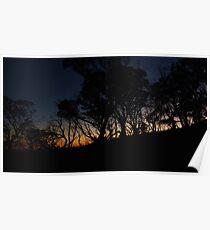 Howitt Sunrise - Victorian Alps, Australia Poster