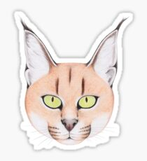 African Caracal Cat Glossy Sticker