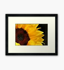 Light in our Darkest Moments... Framed Print