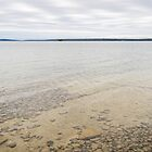 Tiled Bedrock - Lake Manitou in Khaki and Silver by Georgia Mizuleva