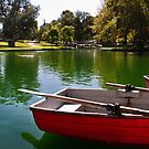 The Boat Lake by Paul Thompson