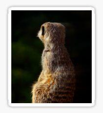 Meerkat Onguard Sticker
