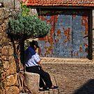 lavander sunshade, Idanha-a-Nova, Beira Baixa, Portugal by Andrew Jones