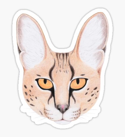 African Serval Cat Glossy Sticker