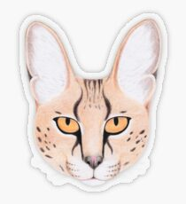 African Serval Cat Transparent Sticker