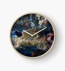 Mysterious And Beautiful Red Sea Underwater World Clock