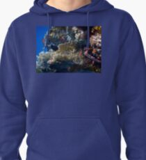 Mysterious And Beautiful Red Sea Underwater World Pullover Hoodie