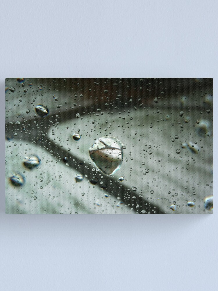 Alternate view of Raindrop Refractions Canvas Print
