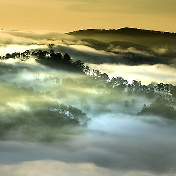 Mist in the mountains by fourretout