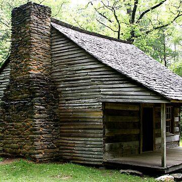 Carter Shields Cabin VI by suddath