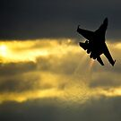 Ukranian Sukhoi-27 at Sunset by andy lewis