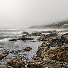 Early Fog Oregon Coast by Charles & Patricia   Harkins ~ Picture Oregon