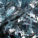 Silver: A Closer Look by THEtoeMas