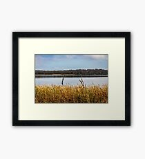 The Still Of Winter  Framed Print