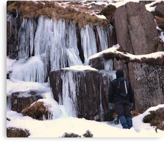 Cold As Ice! by Franco De Luca Calce