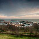 Western Harbour Dover by Dave Godden