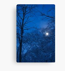 Snowstorm Moonrise Canvas Print