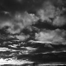 February Sky by Alexis Tobin