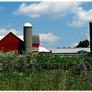 Farming in Indiana by jammingene