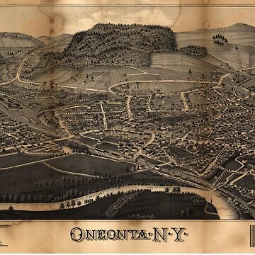Bird's Eye View Map of Oneonta New York (1884) by allhistory