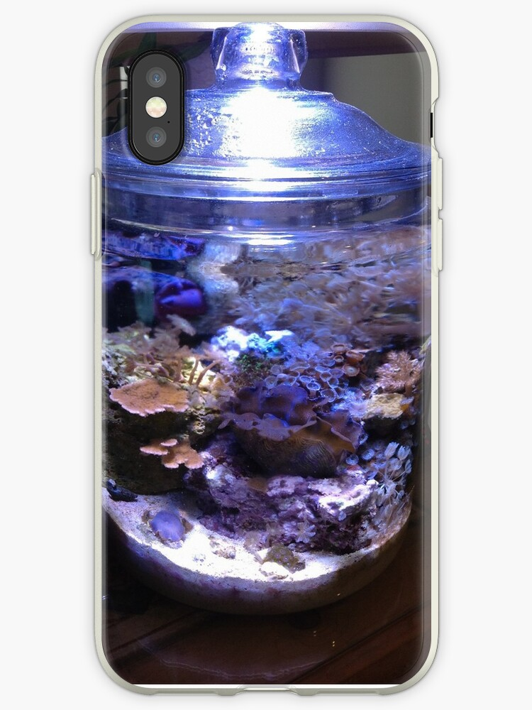'My coral reef in a cookie jar' iPhone Case by rondo620
