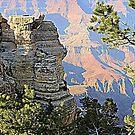 Eine vertikale Ansicht des Grand Canyon von kkphoto1