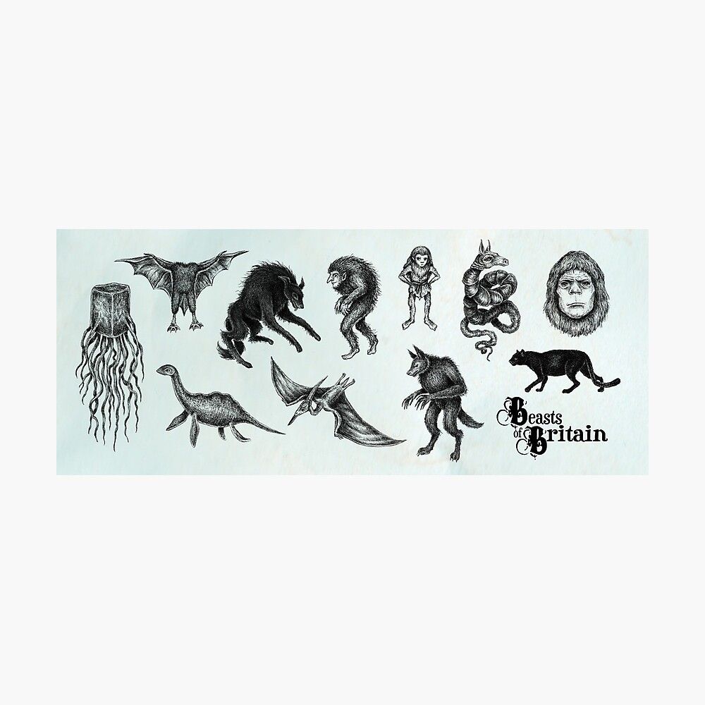 Beasts of Britain - Creature Feature Photographic Print