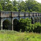 Greystanes Aqueduct - Lower Prospect Canal Reserve by Gino Iori