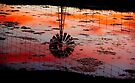 Nhill Mill Sunset Reflections  by Murray Wills