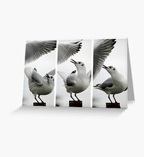 Seagull vs Seagull Greeting Card