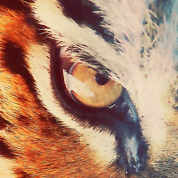 Wild Tiger  by ErianAndre