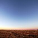 Dawn Over the Mitchell Grass Downs by May-Le Ng