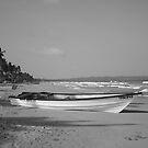 Mayaro Beach, Trinidad & Tobago by redfella82