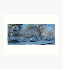 Snow Fence #1 Art Print