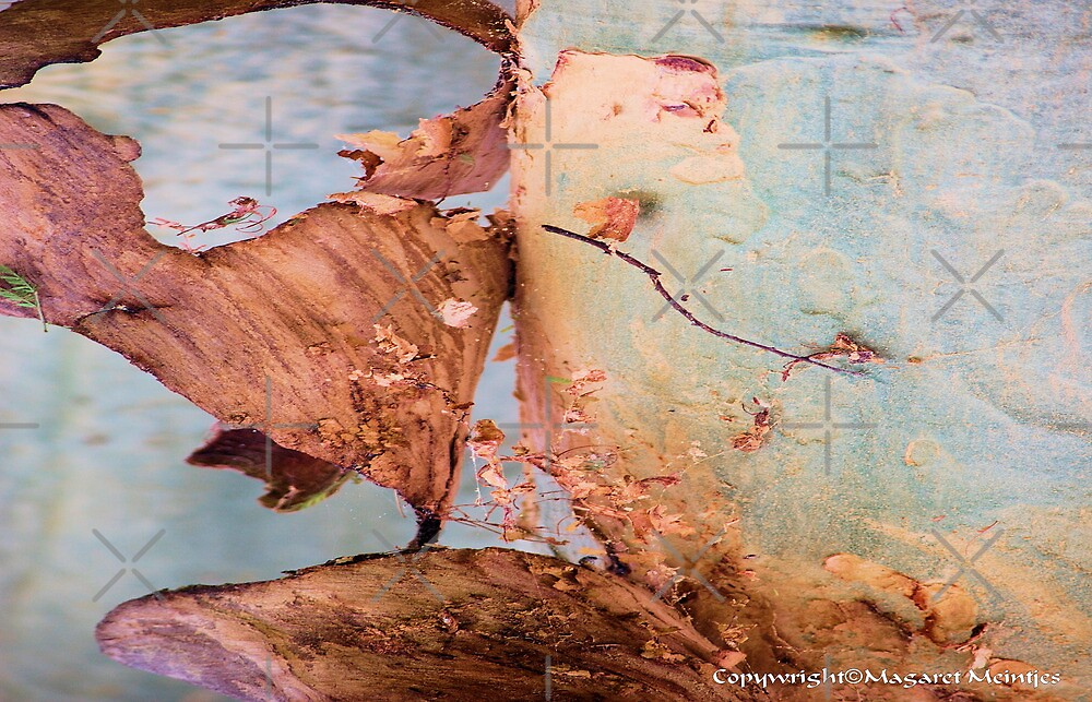 THE FEVER TREE BARK ( in abstract) – Acacia xanthophloea  by Magriet Meintjes