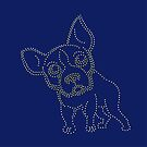 pinhole puppy by VrijFormaat